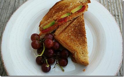 tomato-avocado-hummus panini